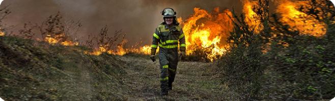 bombero-forestal